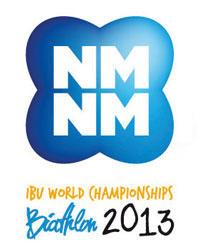 logo_nmnm2013